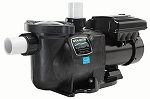 StaRite SuperMax VS Variable Speed Pump w/Timer 110/220 Volts