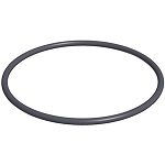3 - Jandy Energy Filter O-Ring