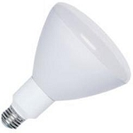 300W, 120v Pool Light Bulb, Medium Base R40FL300/HG
