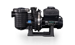 Sta-Rite IntelliPro 2 VSF Variable Speed Pump
